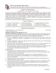 How To Write Resume Summary Elegant It Executive Resume Sample