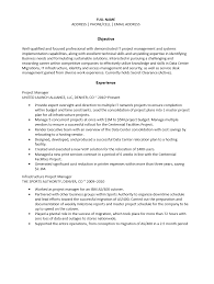Cosy Resume Format Project Manager Sample In Project Manager