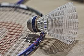 Badminton Shuttlecock on racket free image