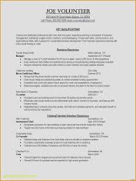Cashier Resume Description New Cashier Resume Description Average Cashier Responsibilities Resume