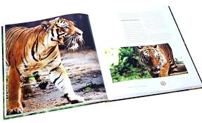 coffee table book how do you brew up a good coffee table book we ask the coffee table book
