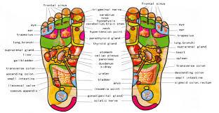 reflexology mk holistic therapies Meridian Lines Body Map Meridian Lines Body Map #13 meridian lines body map