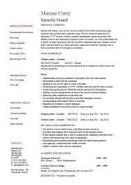 ... Smartness Armed Security Guard Job Description Fresh Design Resume 14  Professional ...