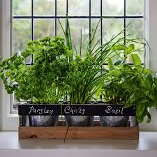 Unwins Kitchen Garden Herb Kit Indoor Herb Garden Kit By Viridescent Wooden Windowsill