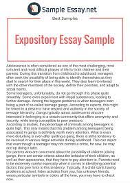 how to write a how to expository essay how to plan write an  how to write a how to expository essay how to plan write an expository essay ayucar com