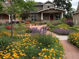Front Yard Garden Design Delectable Starting From Scratch Creating A DroughtResistant Garden
