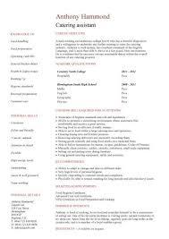 No Experience Resume Template Entry Level Templates Cv Jobs Sample