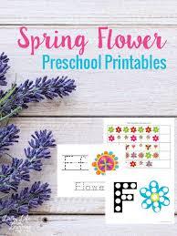Spring Flower Preschool Printables   Preschool printables and ...