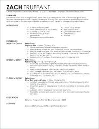 Good Examples Of Resumes Noxdefense Com