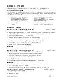 Claims Adjuster Resume Impressive Claims Adjuster Resume 28 Ifest