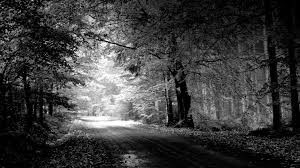 desktop background images black and white. Beautiful Desktop Black U0026 White Desktop Wallpaper Inside Background Images And R