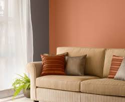 Asian Paints Tractor Emulsion Advanced