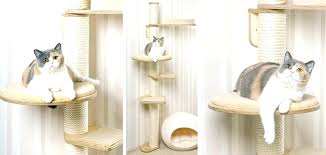 wall mounted cat trees scratching with bracket supplies support hung sophia tree wall mounted cat trees