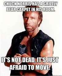 Chuck Norris Quotes New The 48 Funniest Chuck Norris Jokes Of All Time Funny Stuff