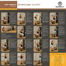 Multi Station Home Gym Exercise Chart Marcy Mp3500 Platinum Home Multi Gym With Thigh Trainer