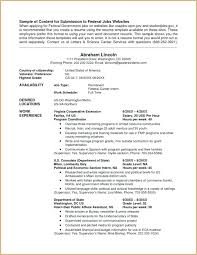 Veteran Resume Examples Military Veteran Resume Examples Ellseefatih Com