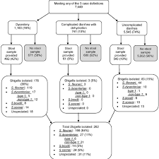 Flow Chart Illustrating Distribution Of Diarrhea Cases And