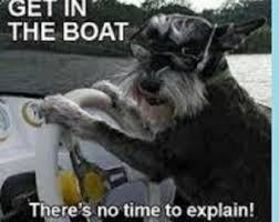 funny boat – Etsy via Relatably.com