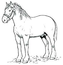 Printable Coloring Pages Of Horses Horse Coloring Pages Printable