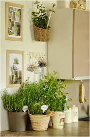 Kitchen Herb Garden Planter Decorate Kitchen With Herb Garden Tips And Diy Ideas Uhozz