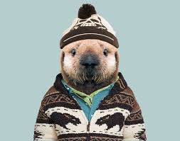 zoo animals in clothes. Plain Animals Sea Otter Pup Inside Zoo Animals In Clothes I