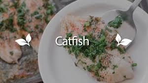 Easy Oven Baked Catfish Recipe - YouTube