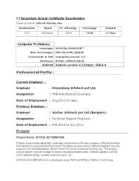 Entry level python developer resume