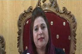 LAHORE (Online): Tehreek-e-Masawat Chairperson Musarrat Shaheen has announced to take part in the next general elections from the district of Dera Ismail ... - 162695_42082718