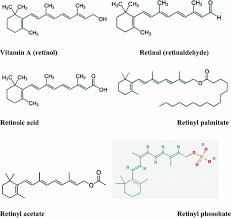 vitamins nutraceuticals food