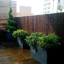 Architecture:Modern Garden With Brown Wood Flooring Also Green Plants On  Black Pot Near Small
