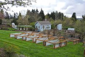 veggie beds 9