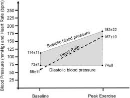 Upper Normal Values Of Blood Pressure Response To Exercise