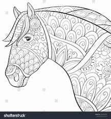55 Inspirerend Kleurplaat Paardenhoofd Afbeeldingen Kleurplaatsite