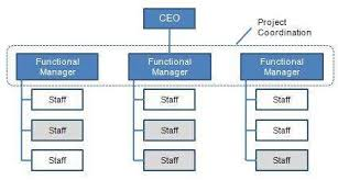Functional Organizational Structure Advantages And