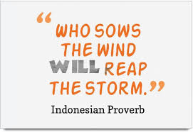 Imerch Sows The Wind Will Quotes By Indonesian Proverb Photographic