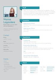 Cv Traditionnel Energique Cv Pinterest Template And Cv