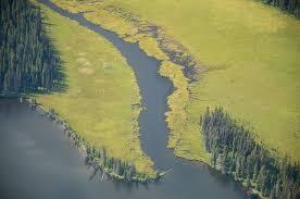 Dean River