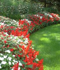 Small Picture beautiful flower beds for front yards Red and White Border Jan