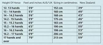 screenshot horse rug sizes