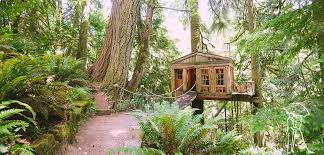 treehouse masters treehouse point. Perfect Point To Treehouse Masters Point K