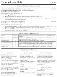 Technical Resume Amazing Computers Technology Resume Examples