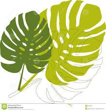 Images Of Coloring Pages Of Leaves L L L L Duilawyerlosangeles
