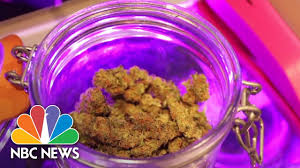 latest news on weed legalization