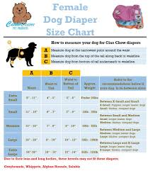 Dog Diaper Size Chart Ciao Chow Female Dog Diapers Adjustable Absorbent Easy To Care For Along With Anti Microbial Layer 3 Pack
