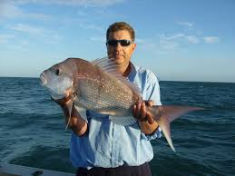 Fishing Moreton Bay Snapper
