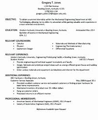 Sample Resume Objective Statements Magnificent Sample Resume Objective Statements For Students New Resume Objective