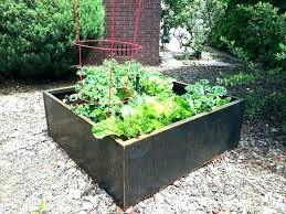 galvanized steel garden beds safe. Plain Galvanized Galvanized Raised Garden Bed Steel Planters Great Is  Metal Safe For   On Galvanized Steel Garden Beds Safe