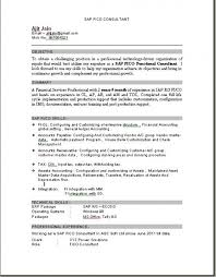 Sap Consultant Sample Resume Beauteous Download Sample Resume Sap Consultant How To Write A Good Document