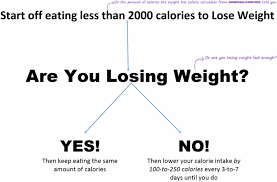 the NowLoss Diet - 4 Steps to Eat Anything You Like to Lose Weight