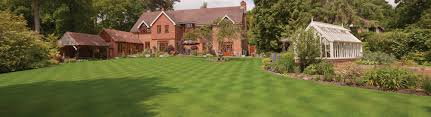 lawn tips news advice from our expert greenkeepers